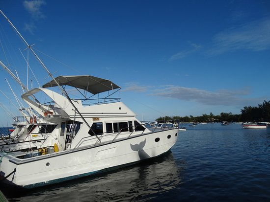 Grande Riviere Noire: Blue Quest Excursion and Big Quest Big Game fishing Boat