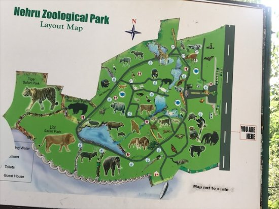 Zoo Map Picture Of Nehru Zoological Park Hyderabad Tripadvisor