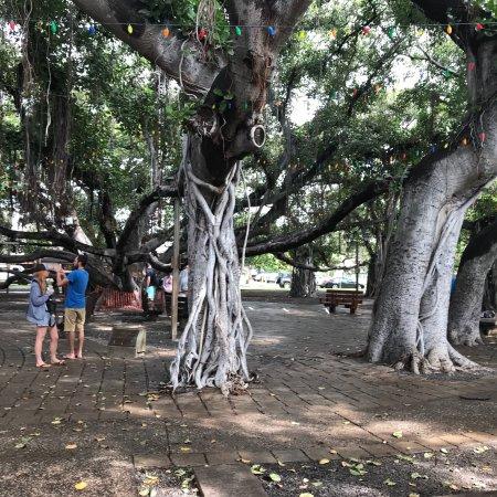 Resort Banyan Tree Vabbinfaru, North Male Atoll, Maldives ...