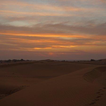 Sahara Travels Day Tours Photo
