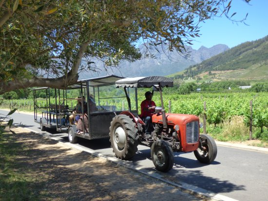 Franschhoek Wine Tram: onward transport