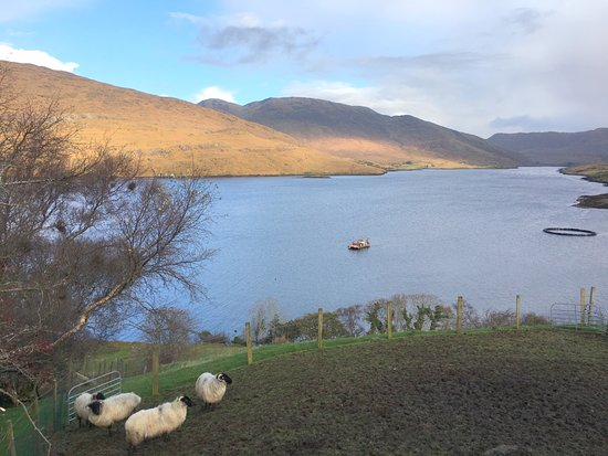 Leenane, Irlandia: Picture perfect!