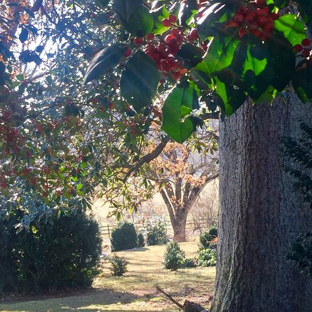 Locust Dale, VA: photo3.jpg