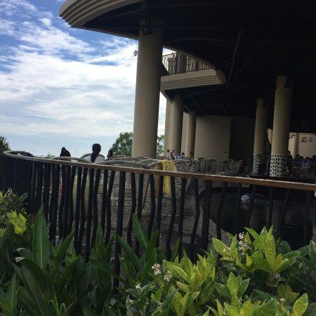 kamar hotel premium view savana picture of baobab safari resort rh tripadvisor co za
