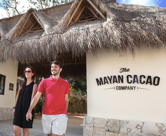 ‪The Mayan Cacao Company‬