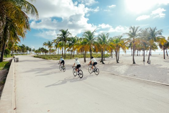 Miami Beach, FL: getlstd_property_photo