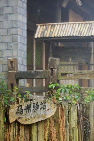 תמונה מMenghai County