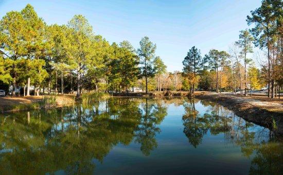 Hubert, Carolina del Norte: One of the ponds at Hawkins Creek Campground