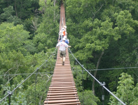 Historic Banning Mills Zip Line Canopy Tours: Sky bridge at Banning Mills