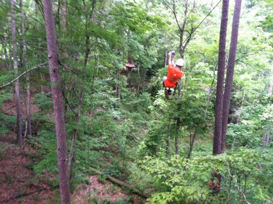 Whitesburg, GA: Zip Line adventure at Banning Mills