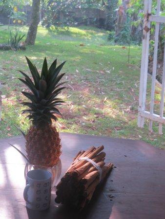 Pitiwella, Sri Lanka: Pinnacle and cinnamon, best the world has to offer.