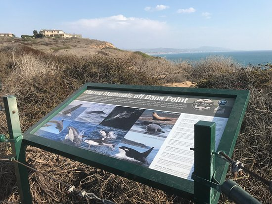 Dana Point Nature Interpretive Cente