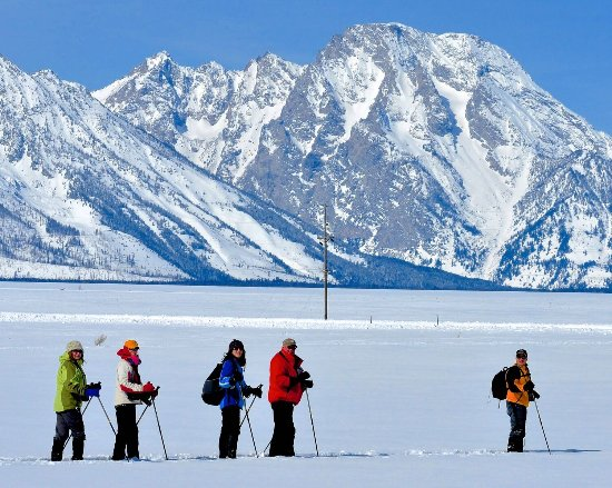 Jackson Hole Eco Tour Adventures: Snowshoeing Tour in Grand Teton National Park
