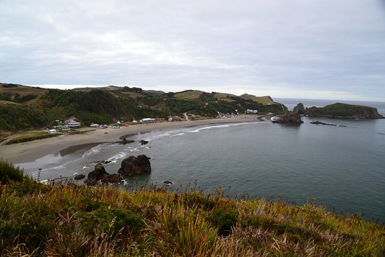 Chiloe Island Penguin Colony: The view over the beach from our cabana