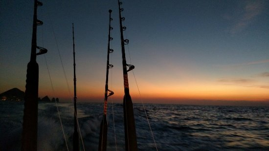Blue Sky Cabo Fishing and Tours: IMG_20171204_061849638_large.jpg