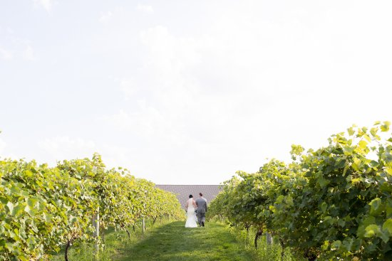 Cannon River Winery: The beautiful bride walking arm and arm with her father.