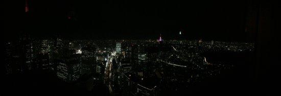 New York Bar: panorama