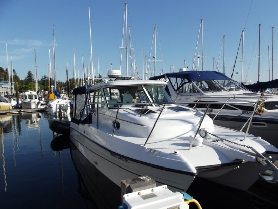 Dockside Grill : Charter: Local Tours, available