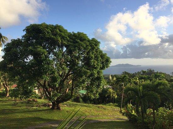 Le chalet qui nous a h berg picture of le jardin for Jardin 3 rivieres