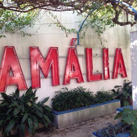 Casa Museu de Amália Rodrigues: photo0.jpg