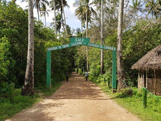 Palumboreef Reef Beach Resort: Jozani forest