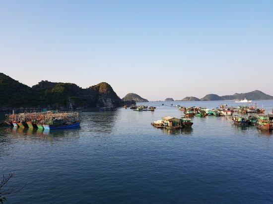 Cat Ba Island Resort And Spa Reviews
