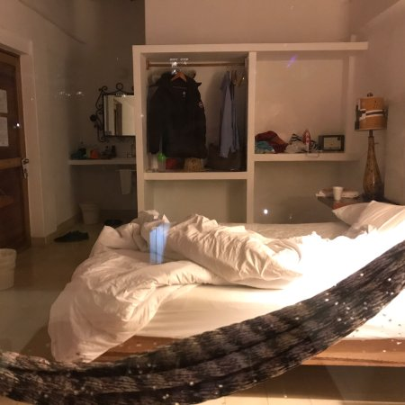 Amaca Hotel: photo0.jpg