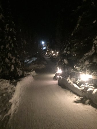 Emerald Lake Lodge: The path to the rooms.