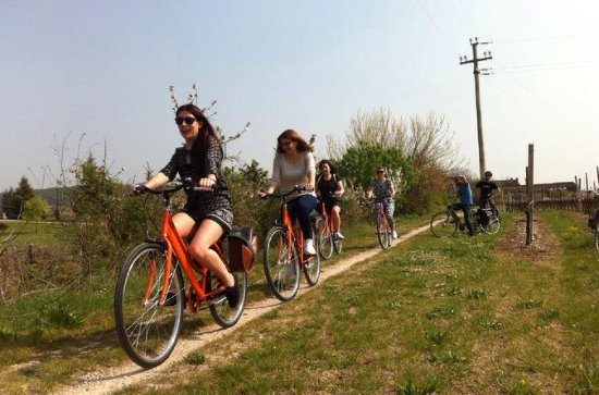 Amarone Countryside E-Bike Tour from...