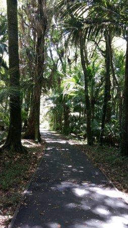 Morere Hot Springs: Walking path