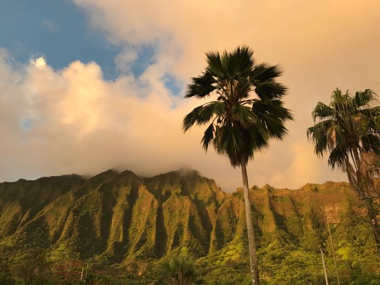 Hoomaluhia Botanical Gardens: Majestic mountains