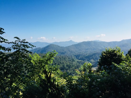 Chiang Mai Elephant Sanctuary: my view early morning