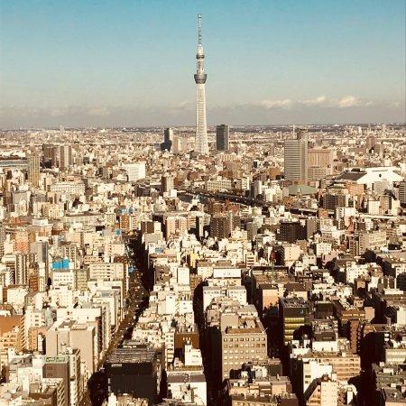 Mandarin Oriental, Tokyo: photo3.jpg