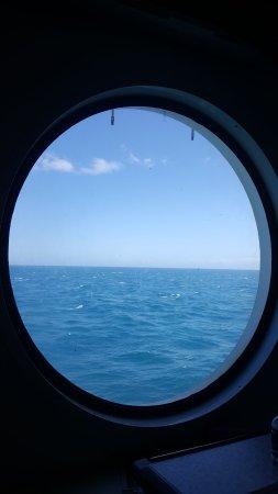 Bluebridge Cook Strait Ferries Photo