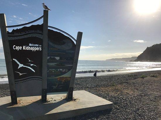 Gannet Beach Adventures: Starting point