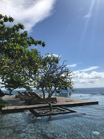 Amorita Resort: Infinity pool facing Alona Beach
