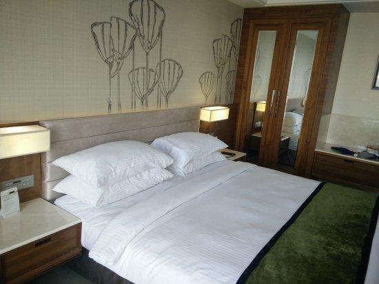 Sayaji Hotel Kolhapur: Bed room