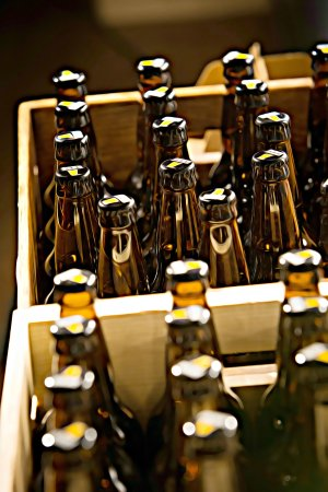 Top Rung Brewing Company: Bottles to go