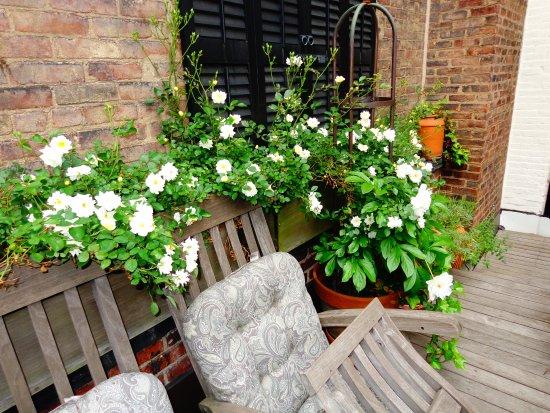 Garden room 1871 house new york city resmi tripadvisor for Garden rooms york