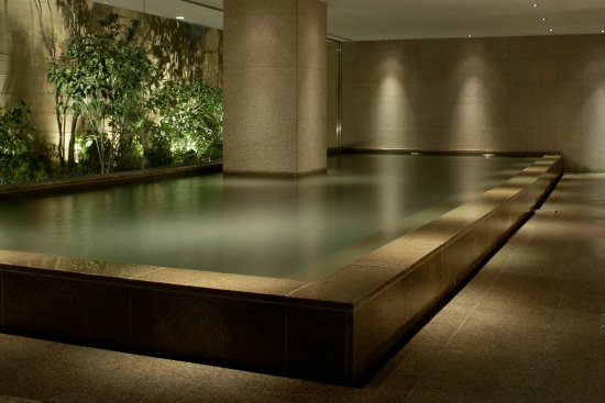 Hyatt Regency Hakone Resort and Spa: 温泉