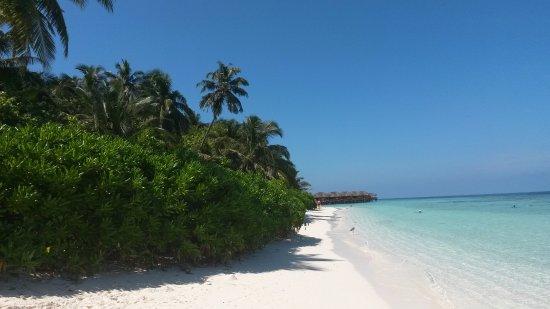 Fihalhohi Island Resort: Пляж