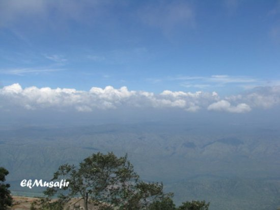 Kodanad View Point: Above the clouds.