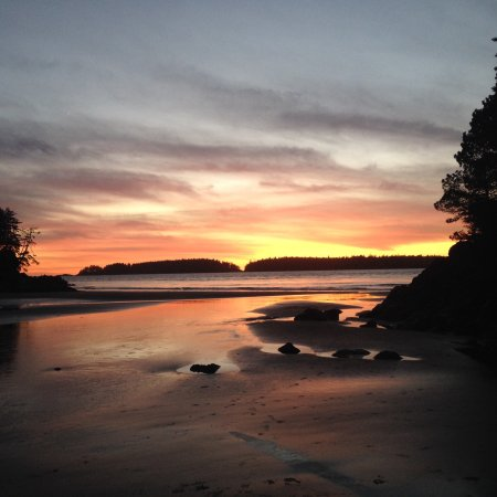 HI-Tofino - Whaler's on the Point Guesthouse: photo0.jpg