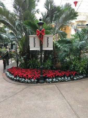 Gaylord Opryland Resort & Convention Center Photo