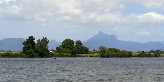 Tweed Eco Cruises: View of Mt Warning from the boat