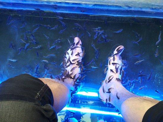 Thajsky raj Thai massages: rybicky