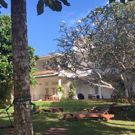 Palm Villa Photo