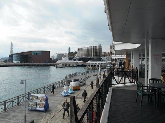 Karato Terminal: カモンワーフ2Fから眺めた桟橋&水族館&大観覧車