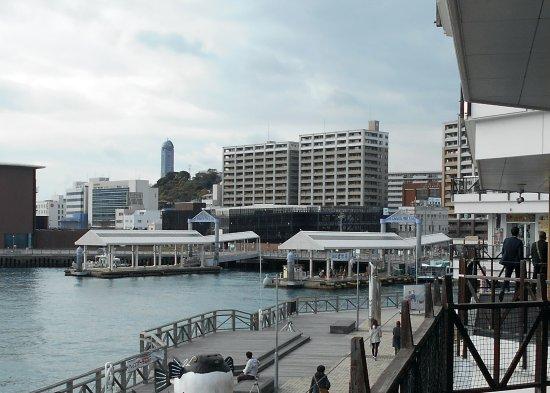 Karato Terminal: カモンワーフ2Fから眺めた桟橋