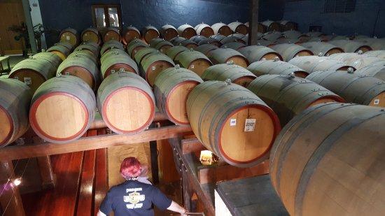 Basedow Wines: Basedow's port cellar
